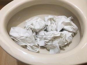 汚物でのつまり