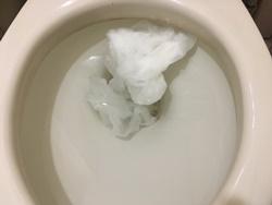 排泄物やトイレットペーパーによる便器内での詰まり