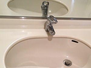 排水口のフタが取り外せないタイプ
