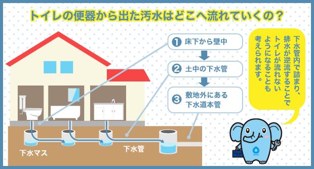 トイレの便器から出た汚水はどこへ流れていくの?