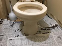 トイレの床に新聞紙等を敷いて下さい