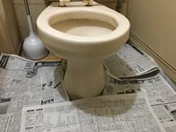 トイレマット等は取り除き新聞紙等を敷いて下さい